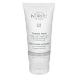 Norel (Dr Wilsz) SKIN CARE CREAMY MASK AFTER AHA TREATMENT Krem-maska opatrunek z 5% pantenolem i olejem tamanu (PN120) - Norel (Dr Wilsz) SKIN CARE CREAMY MASK AFTER AHA TREATMENT - pn-120-skin-care-opatrunek_l.png